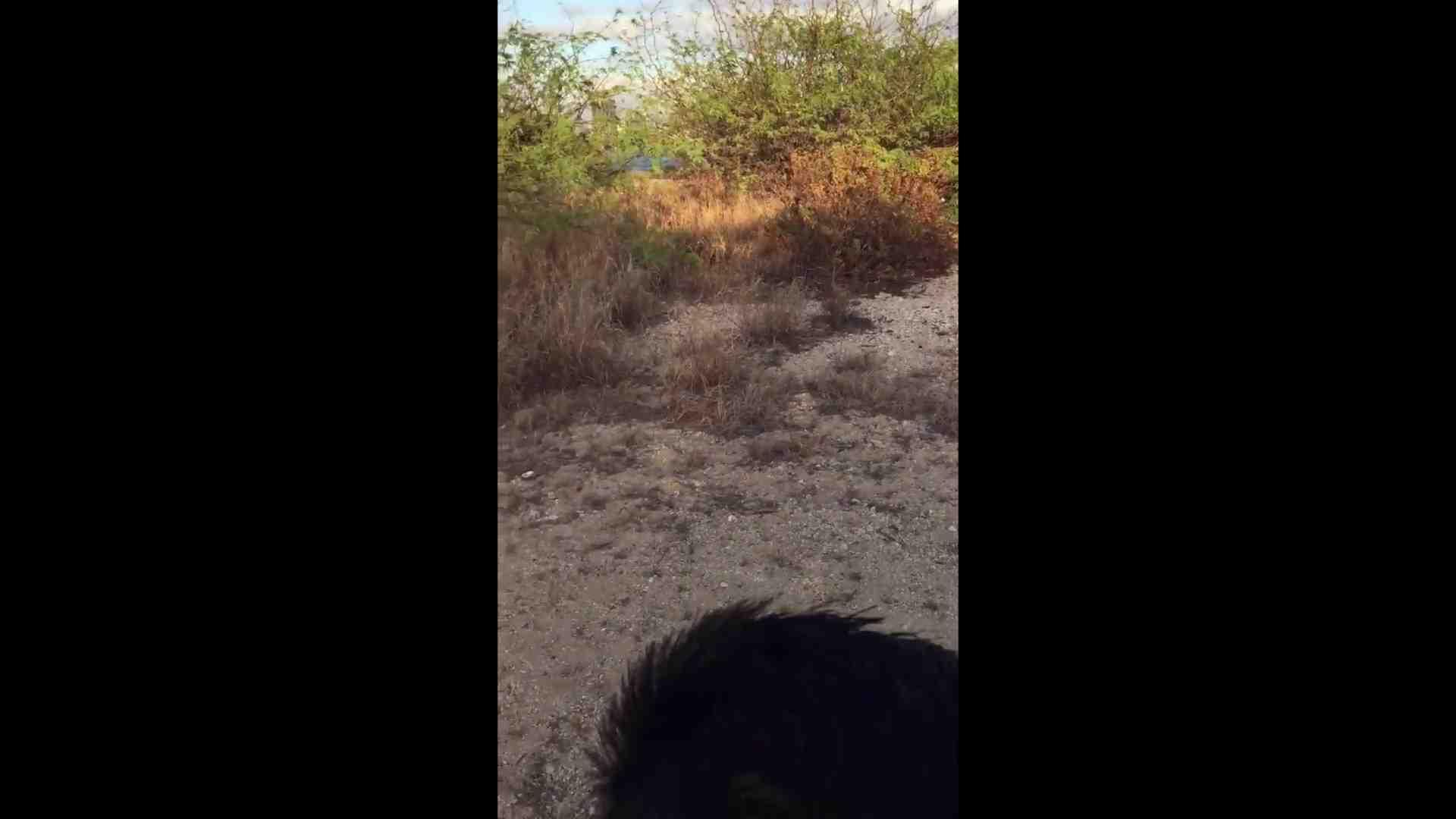 エロいフェラシーンをピックアップvol32 フェラ ゲイ素人エロ画像 87枚 77