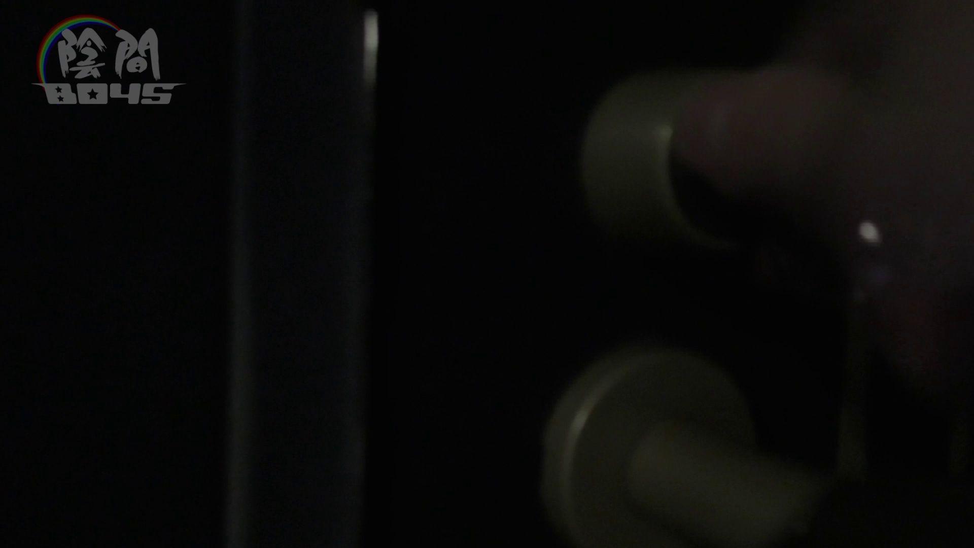 ホストのお仕事1~vol.6  罰は痛~いアナル挿入 手コキ AV動画 115枚 46